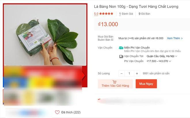 sung-sot-khi-la-bang-tuoi-len-san-het-gia-100-1623885741983-1623919889.jpeg